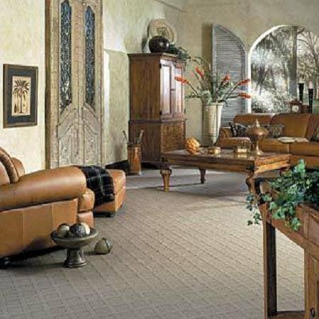 Loop Style Carpet