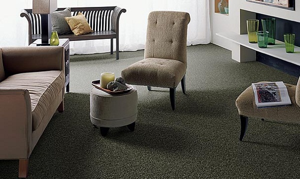 Texured Style Carpet