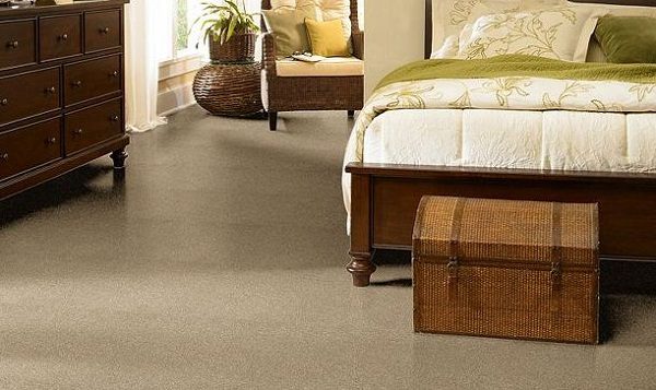 Dark Carpet for Small Children or Pets
