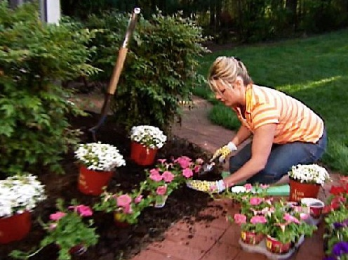 Tips when planting flowers house made home for Beautiful flowers to plant in your garden