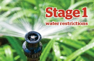 watering stage 1