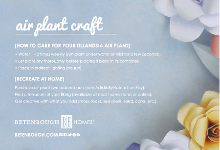 AirPlantCraft-02
