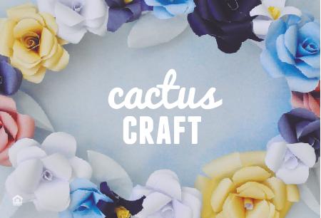 CactusCraft-01