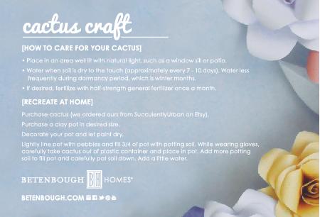 CactusCraft-02