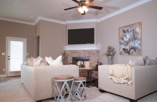 Living roomtv